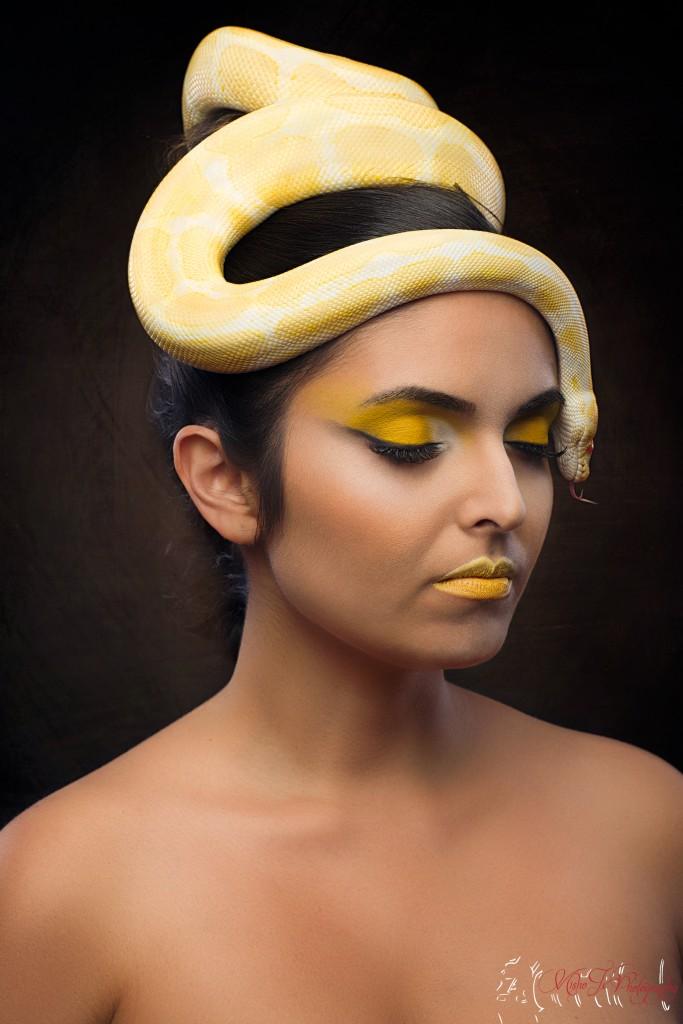 Sujatha Kristensen-Snake-MishoJx Photography (2)